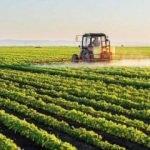 Tarımsal desteklerde yüzde 27 artış