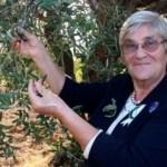 Canan Karatay, zeytinyağının müthiş faydalarını tek tek saydı
