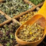 Zayıflama etkili bitki çayı kullananlar dikkat: Ani ölümlere neden olabilir