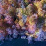 Anadolu'da sonbahar renkleri! Doyumsuz görüntüler