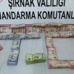 Şırnak'ta kaçakçılık ve uyuşturucu operasyonu: 33 gözaltı