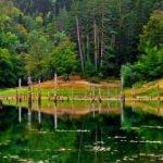 Sülüklü Göl Tabiat Parkı nerede? Nasıl gidilir? 2020 Giriş ücretleri