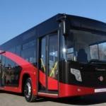 Türkiye'den Roma'ya 227 otobüs gönderildi