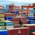 Yılmaz: Üreticilerimiz, Avrupa'nın 7 ülkesine ihracat yapıyor