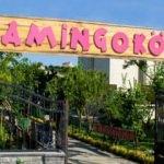 Flamingo köy nerede? Nasıl gidilir? Kahvaltı fiyatı ne kadar?