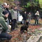 Bakan Pakdemirli, tedavi edilen kara akbabayı doğaya saldı