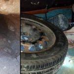 Arkeolojik SİT alanında kaçak kazı yaparken yakalandılar