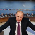 Kremlin'den NATO açıklaması! Yarışa girmeyeceğiz