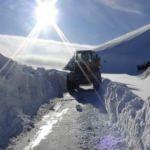 Muş'ta kar yüzünden kapanan 30 köy yolu açıldı