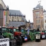 Hollanda'da çiftçiler sokaklara döküldü