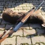 Nesli tükenme tehlikesindeki hayvanı öldürdü