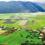 Tarımda koruma alanı genişliyor
