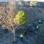 İlçenin yeri değişiyor! Taşınma ağaçlardan başladı