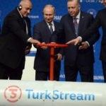 Dünyanın gözü Türkiye'de: TürkAkım'ında vanalar açıldı