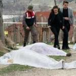 Bolu'daki cinayet davasında genç kadın herkesi ağlattı!