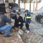 Ölmek üzere bulduğu köpekleri sahiplenen kaymakam gönülleri fethetti