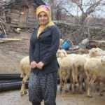 19 yaşında aldığı devlet desteğiyle 3 yıldır hayvancılık yapıyor