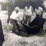 Kıbrıs'ta 5 şehidin mezarının açılmasına karar verildi