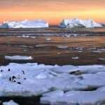 Dünya için ürkütücü haber! Antarktika'da sıcaklık rekoru kırıldı