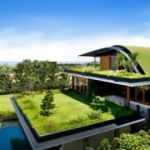 Yeşil çatı  çözümü ile şehirler nefes alacak