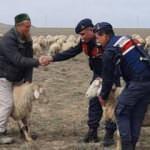 40 koyun çalan Rus uyruklu hırsız yakalandı