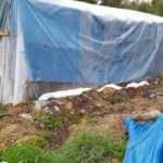 Çadırda yaktığı mangal kömürü canından etti