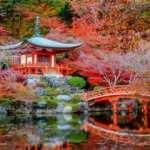 Dünyanın dört bir yanından en güzel Japon bahçeleri