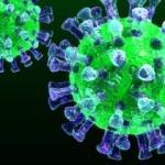 Favipiravir İlacı nedir, Favipiravir koronavirüsü iyileştiriyor mu?