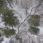 Kar yağışı Domaniç Dağlarını beyaza bürüdü