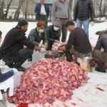 Hakkari'de koronaya karşı 70 kurban kesildi