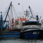 Balık avlama yasağını ihlal eden 7 kişiye 22 bin 50 lira para cezası