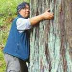 İzlanda'dan koronavirüs önerisi: Ağaçları kucaklayın