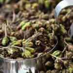 Misk otu nedir? Misk otu nasıl kullanılır? Misk otunun faydaları nelerdir?