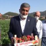 Bayır-Bucak Türkmenlerinden Ümit Özdağ'a çilekli mesaj!