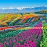 Bu hatadan ders alınmalı: Japon adası Hokkaido'da ikinci dalga korona şoku!