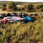Çoban öldü, kardeşi ağır yaralı! 150 hayvan telef oldu