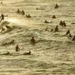 Koronavirüsü yenip sahillere koştular