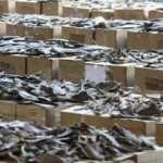 38 bin köpek balığından elde ettiler! Hong Kong'da büyük vurgun