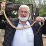 Eve giren boz yılanı elleriyle yakaladı