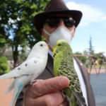 Her anını kuşlarla geçiren adam görenleri şaşkına çeviriyor