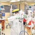 Çapa koronavirüsle mücadelede dünya birincisi