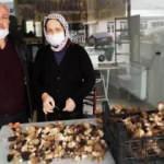 Kurutulmuş kuzugöbeği mantarı 800 liraya satılıyor