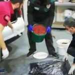 Salçanın içinden 20 bin 250 uyuşturucu hap çıktı