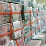 Türkiye Varlık Fonu'ndan kamu bankaları açıklaması