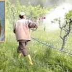 Bahçe ilaçlanırken zehirlenen kadının acı ölümü