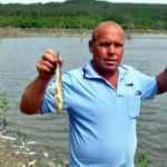 Binlerce balığın ölüm nedeni belli oldu