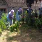 Park ve bahçeler normalleşme sürecine hazır