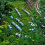 56 bal ormanı kurulacak