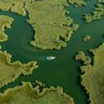 Dalyan'ın labirent sazlıkları turistlerin yeni gözdesi olacak