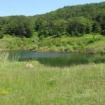 Gemlik'te 11 yıl önce kuruyan göl canlandı